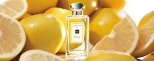 grapefruit scented perfume